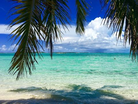 Jay Gotlieb Bahamas